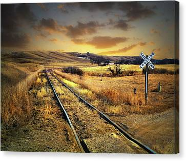 Prairie Tracks Canvas Print