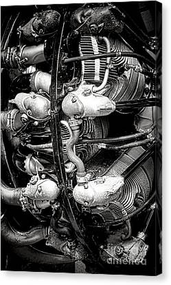 Vintage Aircraft Canvas Print - Pratt And Whitney Twin Wasp by Olivier Le Queinec