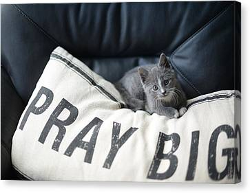 Canvas Print featuring the photograph Pray Big by Linda Mishler