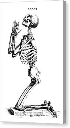 Creepy Canvas Print - Praying Skeleton by William Cheselden