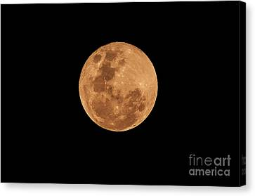 Post-penumbral Moon Canvas Print by Venura Herath