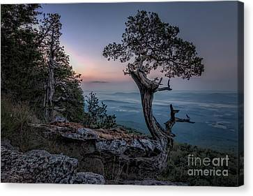 Precarious Canvas Print