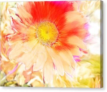 Precious Flower Canvas Print by Janie Johnson