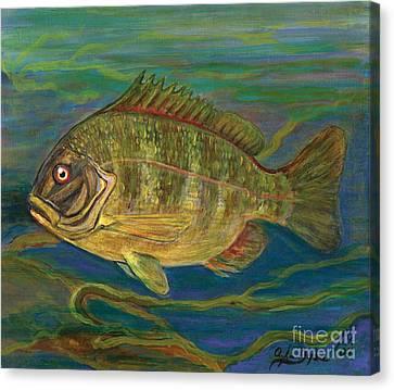 Predatory Fish Canvas Print