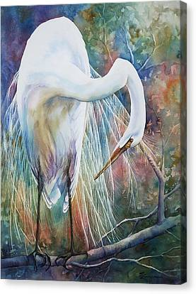Preening Egret Canvas Print by Sue Zimmermann