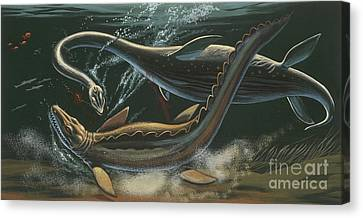 Prehistoric Marine Animals, Underwater View Canvas Print by American School