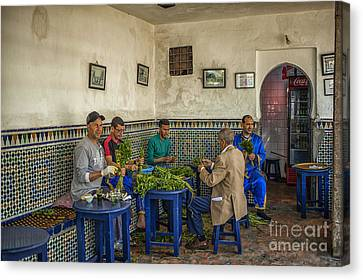 Preparing Mintleaves For Tea Canvas Print