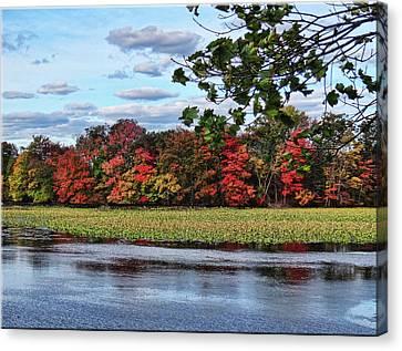 Pretty Autumn Scene Canvas Print by Mikki Cucuzzo