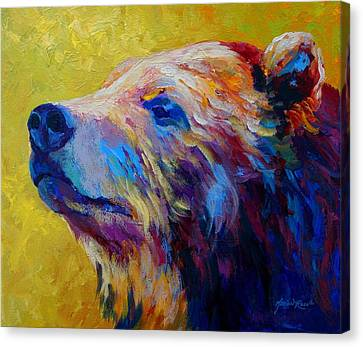 Pretty Boy - Grizzly Bear Canvas Print by Marion Rose