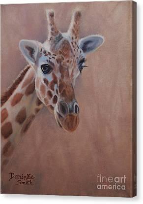 Pretty Eyes - Giraffe Canvas Print by Danielle Smith