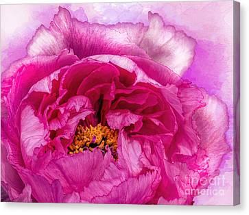 Blending Canvas Print - Pretty In Pink by Gillian Singleton