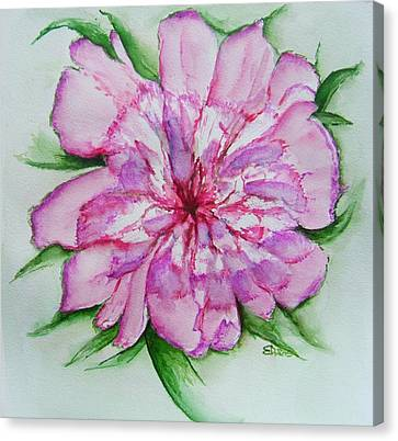 Pretty Peony Canvas Print by Elaine Duras