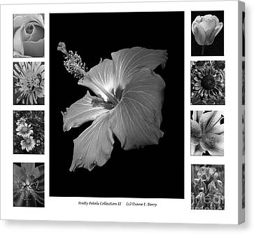Canvas Print featuring the photograph Pretty Petals Collection II by Diane E Berry