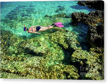 Pretty Woman In Bikini Snorkeling Through Turquoise Water At The Coast Canvas Print by Andreas Berthold