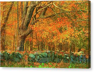 Preuss Road Stone Wall Canvas Print by Trey Foerster