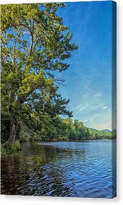 Price Lake Canvas Print