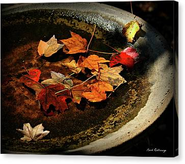 Priceless Leaves Fall Canvas Print by Reid Callaway