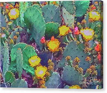 Prickly Pear Cactus 2 Canvas Print by Methune Hively