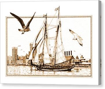 Pride Of Baltimore Canvas Print by John D Benson