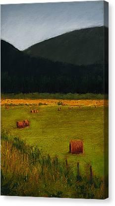 Priest Lake Hay Bales Canvas Print by David Patterson