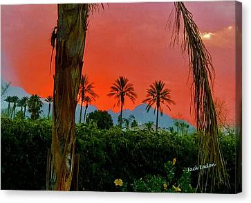 Primary Desert Sunset Canvas Print by Jack Eadon