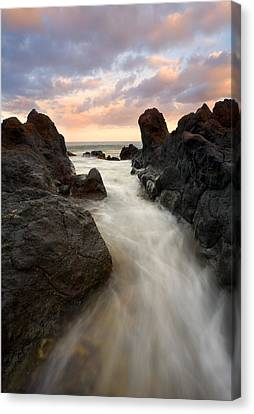 Primordial Tides Canvas Print by Mike  Dawson
