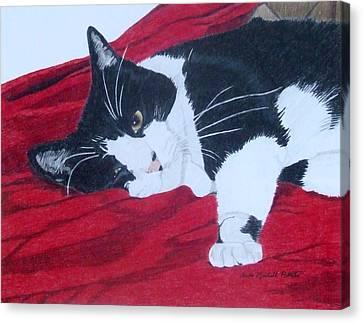 Prince Charming Canvas Print by Anita Putman