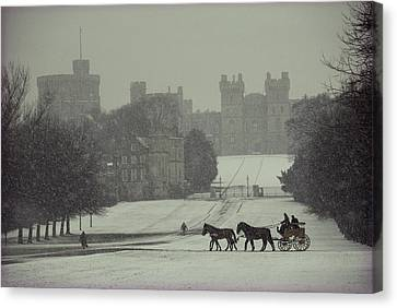 Four Animal Faces Canvas Print - Prince Philip Of England Drives A Coach by James L Stanfield