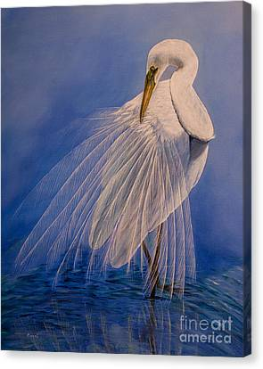Great White Heron Canvas Print - Princess Of The Mist by Zina Stromberg