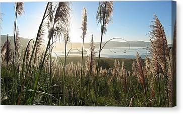 Princeton Harbor. California Canvas Print by Bob Bennett