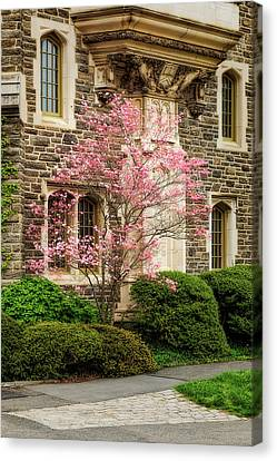 Princeton University Patton Hall  Canvas Print by Susan Candelario
