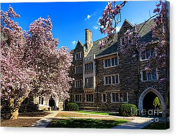 Canvas Print featuring the photograph Princeton University Pyne Hall Courtyard by Olivier Le Queinec