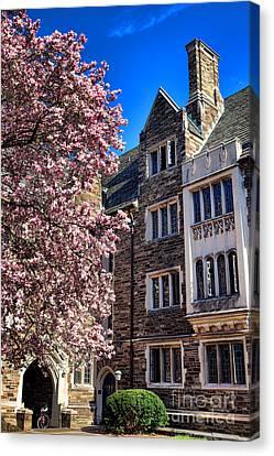 Princeton University Pyne Hall Magnolia  Canvas Print
