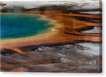 Prismatic Spring Canvas Print