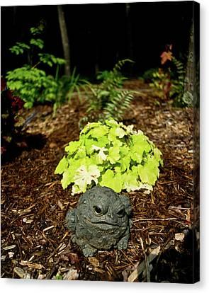 Private Garden Go Away Canvas Print by Douglas Barnett
