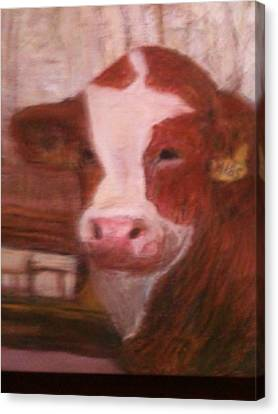 Prized Bull Canvas Print by Richalyn Marquez