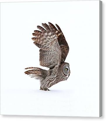 Proceed To Runway For Take Off Canvas Print
