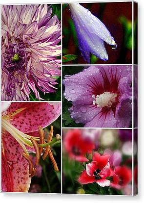 Profusion Canvas Print by Priscilla Richardson