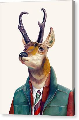 pronghorn Deer Canvas Print by Animal Crew