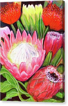 Protea Flowers #240 Canvas Print by Donald k Hall
