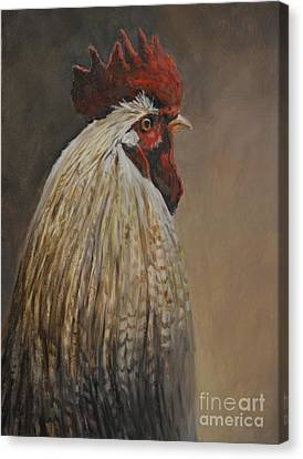 Proud Rooster Canvas Print by Charlotte Yealey