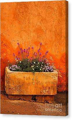Canvas Print featuring the photograph Provencal Melody by Olivier Le Queinec