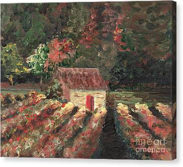 Provence Vineyard Canvas Print by Nadine Rippelmeyer