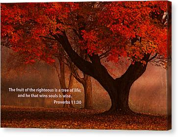 Canvas Print featuring the photograph Proverbs 11 30 Scripture And Picture by Ken Smith