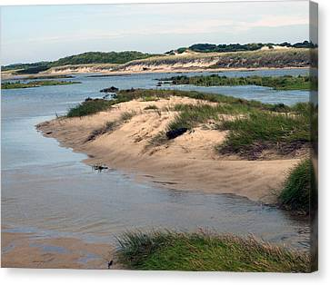 Provincetown Dunes And Marshes Canvas Print