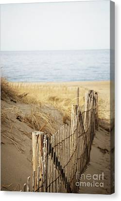 Provincetown II Canvas Print by HD Connelly