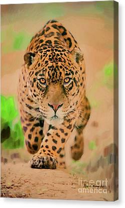 Feline Canvas Print - Prowling Leopard by Jerry L Barrett
