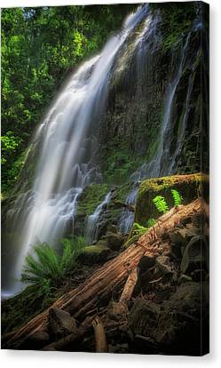 Canvas Print featuring the photograph Proxy Falls by Cat Connor