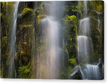 Mystical Landscape Canvas Print - Proxy Falls Textures And Light 2 by Leland D Howard