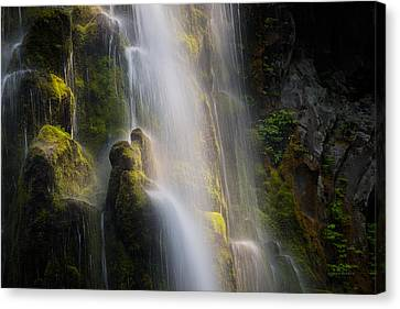 Mystical Landscape Canvas Print - Proxy Falls Textures And Light by Leland D Howard